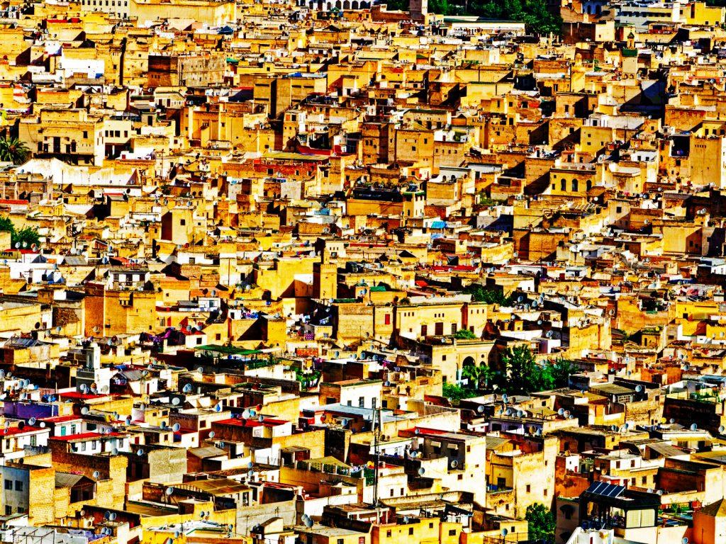 Fez City